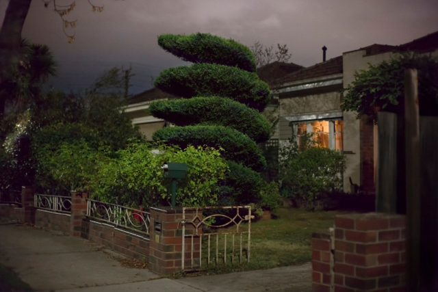 French Avenue topiary